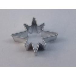 Hvězdička nepravidelná malá